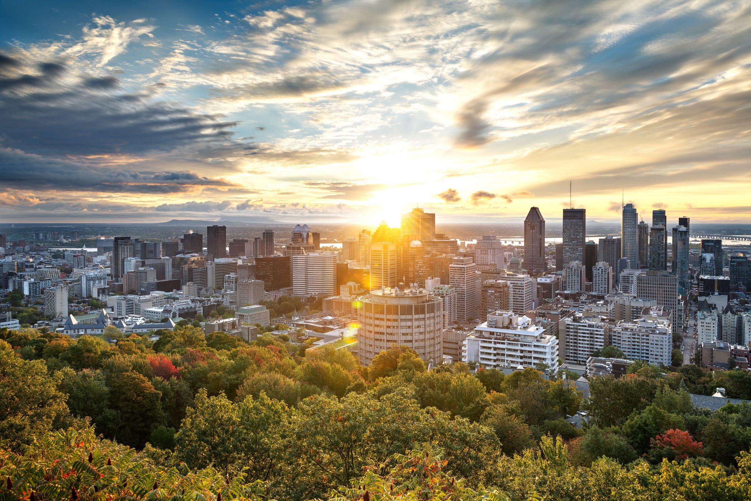 agents immobiliers montreal
